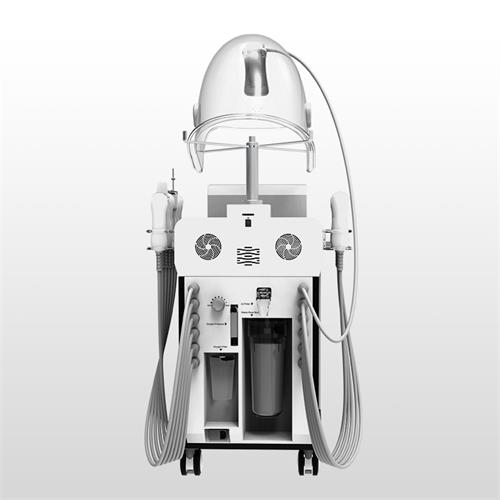 12 in 1 Multi-functional Hyperbaric Oxygen Facial Machine/Oxygen Injection Beauty Equipment